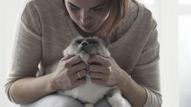 vidéos et rushes de femme tenant et caresser son chat mignon sur ses genoux - femme seule s'enlacer