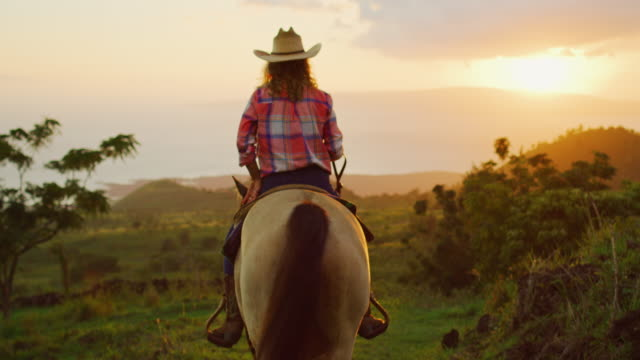 Woman Horseback Riding Woman horseback riding at sunset cowgirl stock videos & royalty-free footage