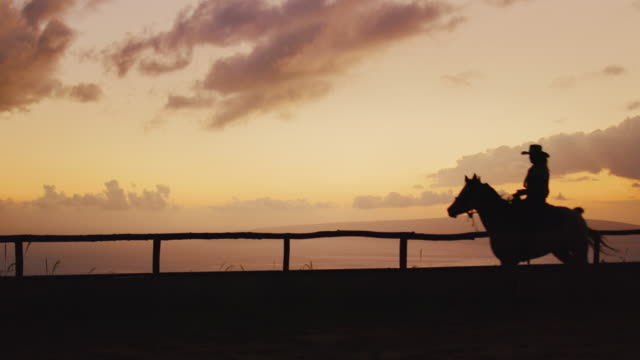 Woman Horseback Riding Silhouette of woman horseback riding at sunset cowgirl stock videos & royalty-free footage
