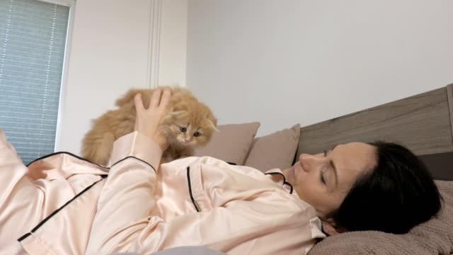woman hugging cute little fluffy kitten - viziarsi video stock e b–roll