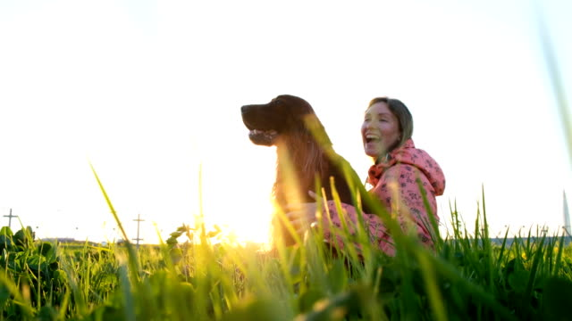 Woman hugging the dog at sunset and laughing, young girl with pet sitting on grass and resting in nature Woman hugging the dog at sunset and laughing, young girl with pet sitting on grass and resting in nature. irish setter stock videos & royalty-free footage