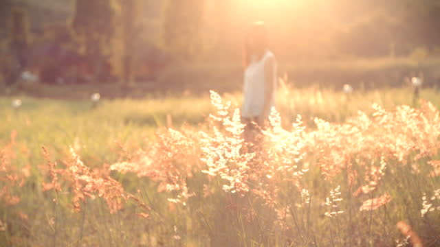 Woman in a field of feather grass video