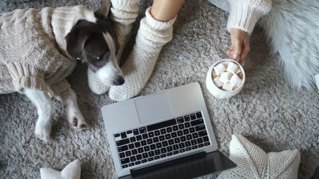 居心地の良い家庭でホットチョコレートを飲む女性は靴下を履き、ラップトップを使用しています - イヌ科点の映像素材/bロール