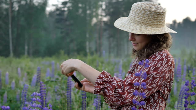 woman in dress and straw hat photographs on phone blooming lupins in field against background of fog
