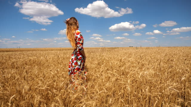 woman in dress stands in the middle of the field with wheat and straightens hair video