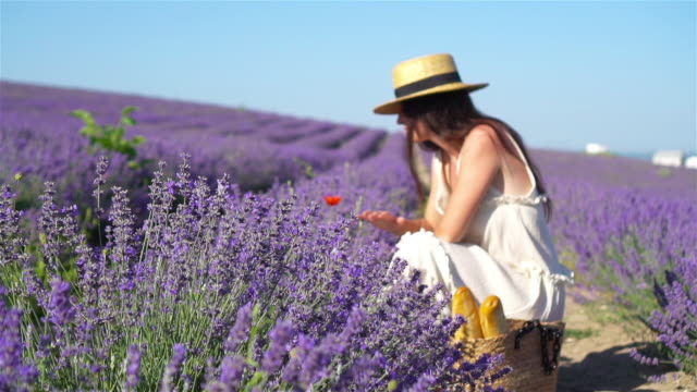 woman in lavender flowers field at sunset in white dress and hat - wschodnio europejski filmów i materiałów b-roll