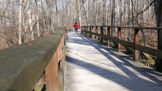 Woman in red shirt walking away and cheering with arms in the air on wooden boardwalk in nature park