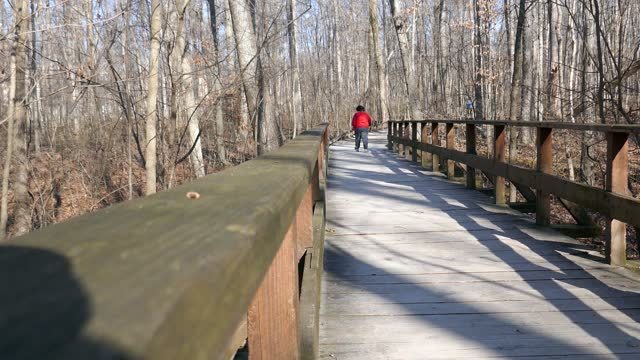 Woman in red shirt walking away on wooden boardwalk in nature park