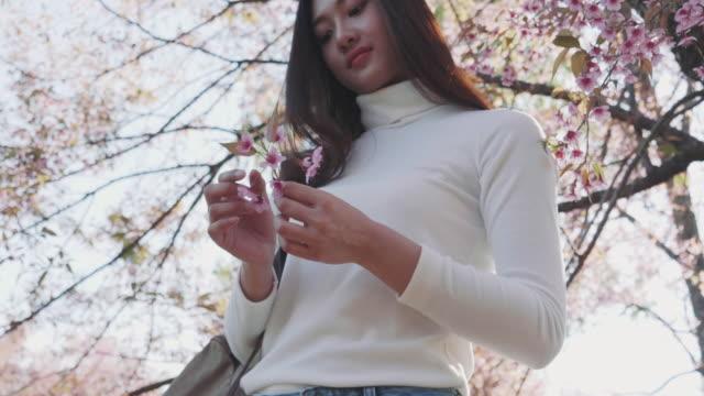 桜の木の女 - 春のファッション点の映像素材/bロール