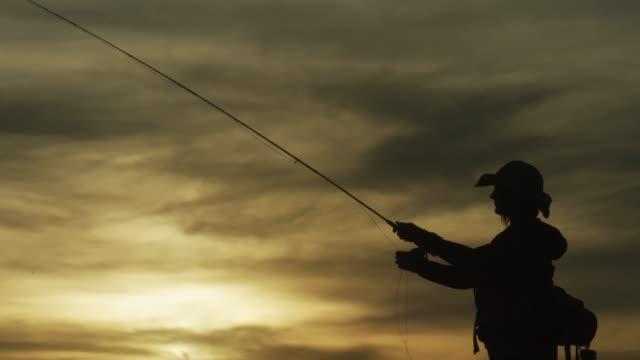en kvinna i silhouette flug fiskar vid solnedgången under en delvis molnig himmel - meta bildbanksvideor och videomaterial från bakom kulisserna