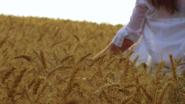 Woman in wheat field video