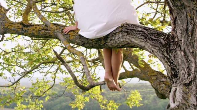 SLO MO Woman in white shirt sitting on a tree video