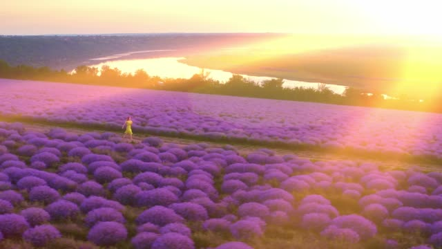 Woman in yellow dress running on a beautiful lavender field