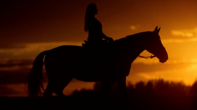 Woman is horseback riding to the horizon at sunset video