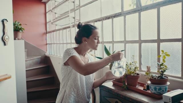 女人在家裡澆花 (慢動作) - 植物 個影片檔及 b 捲影像