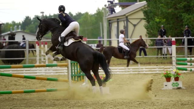 SLOW MOTION: A woman jockey in a black and white suit on a horse makes a jump over the barrier. Competitions in equestrian sport. SLOW MOTION: A woman jockey in a black and white suit on a horse makes a jump over the barrier. Competitions in equestrian sport. horseback riding stock videos & royalty-free footage