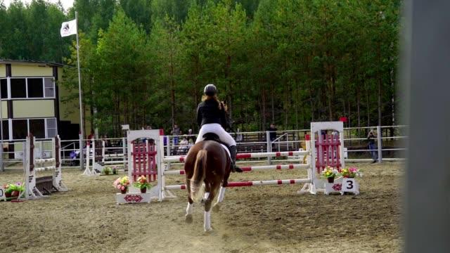 slowmotion: en kvinna jockey i svart och vit kostym på en häst gör ett hopp över barriären. tävlingar inom hästsporten. - häst tävling bildbanksvideor och videomaterial från bakom kulisserna