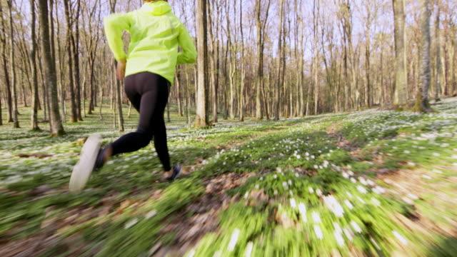 slo-mo-ts-frau durch den wald joggen - einzelne frau über 30 stock-videos und b-roll-filmmaterial