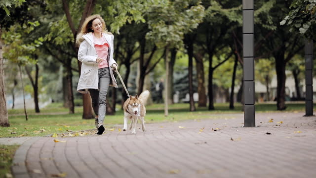 Woman jogging together with dog husky in park at the autumn day, slow motion video