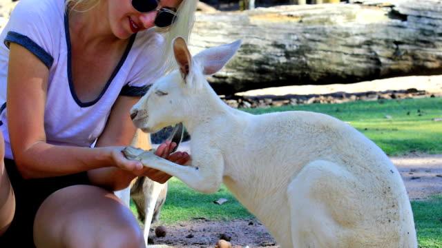Woman kissing Kangaroo video