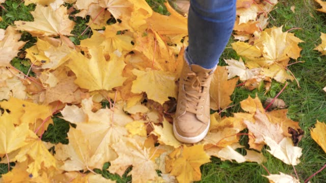 Woman Legs In Boots Close Up Go Through The Green Lawn With Yellow Fallen Leaves video