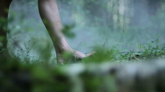 donna gambe a piedi attraverso la foresta - scalzo video stock e b–roll