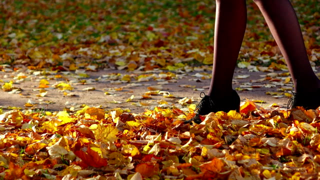 Woman long legs, step and kick up fallen leaves, slow motion