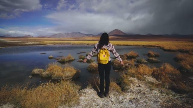 Woman looking at scenic view of lake in Atacama desert