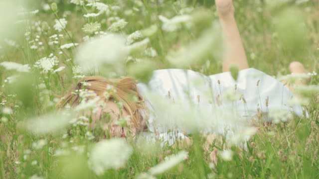 SLO MO Woman lying in the middle of a meadow full of wildflowers Slow motion of a mid adult woman looking at the camera while she lying in the middle of a meadow full of wildflowers. lying down stock videos & royalty-free footage