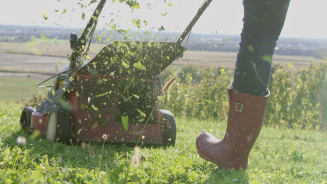 SLO MO Woman mowing the grass in a vineyard video