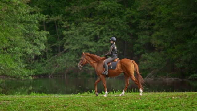 湖に沿って乗馬に乗ってスローモーションの ts 女性 - 動物に乗る点の映像素材/bロール