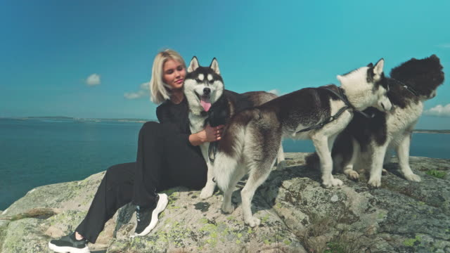 Woman on cliff near the sea with three siberian husky dogs Loving playful outdoors with blonde woman scandinavia stock videos & royalty-free footage