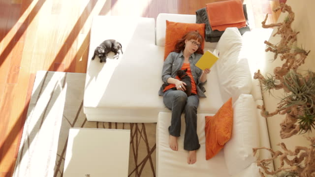 Woman on couch reading at home with two dogs video