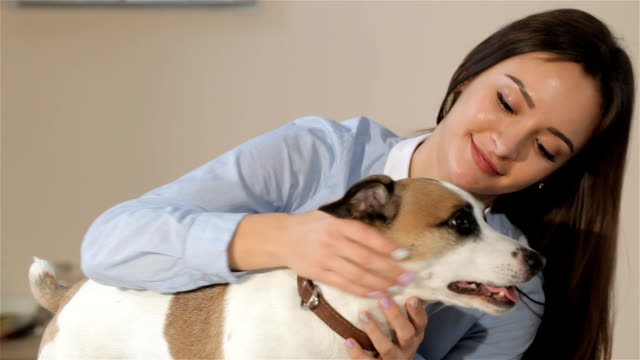 Woman pets the dog at the veterinarian clinic video