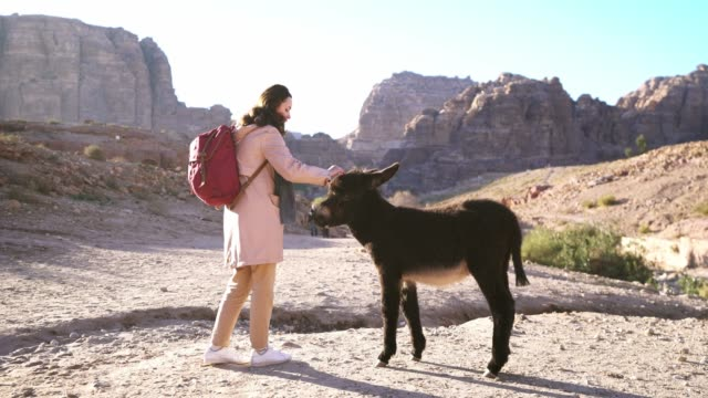 Woman petting donkey in Petra site