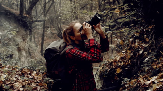 Woman photographing wilderness area. Autumnal landscape Woman exploring forest. Making photos with professional camera camera photographic equipment stock videos & royalty-free footage