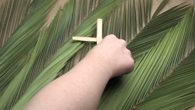 Woman Placing Crosses on Palm Branches A woman places three crosses made of dried palm leaves on a bed of palm branches spread out on a burlap background. Interlaced. branch plant part stock videos & royalty-free footage