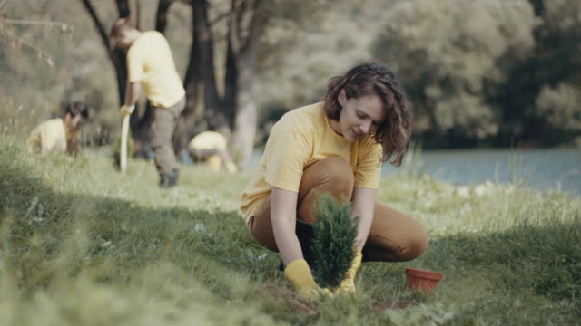 Woman planting a tree video
