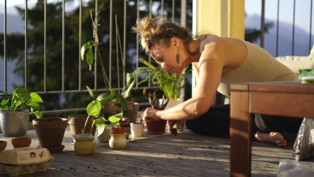 woman planting seeds, surround by vegetables and plants on balcony garden - balcone video stock e b–roll