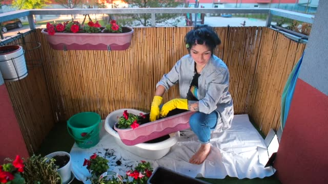 A woman plants flowers in pots on the balcony of the apartment in self-isolation