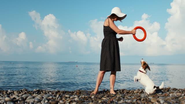 Woman play with her dog Woman play with her dog on sea coast jack russell terrier stock videos & royalty-free footage