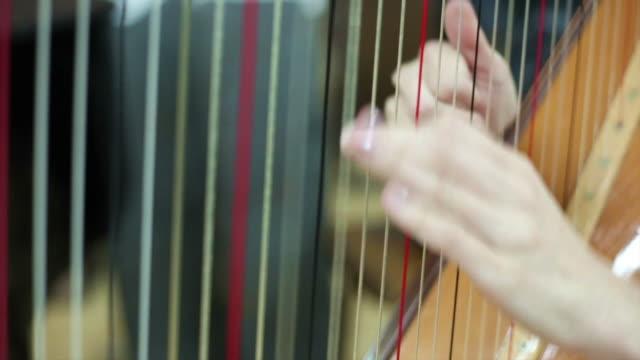 woman playing harp at concert