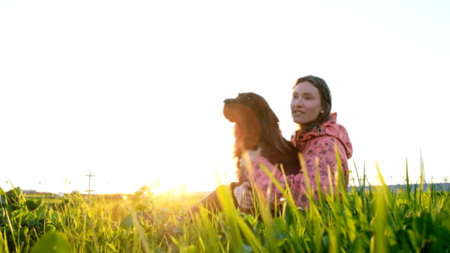 Woman playing with dog at sunset, young girl with pet sitting on grass and relaxing in nature Woman playing with dog at sunset, young girl with pet sitting on grass and relaxing in nature. irish setter stock videos & royalty-free footage
