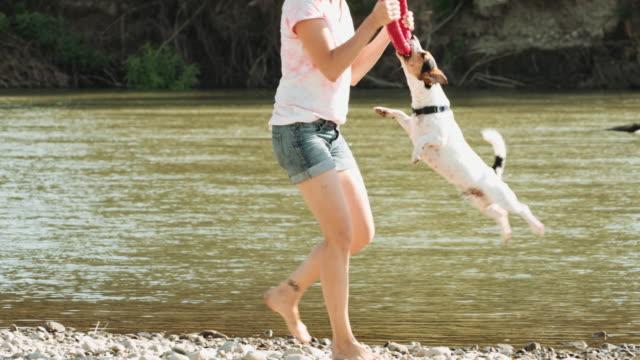 woman playing with dog near river - pantaloncini video stock e b–roll