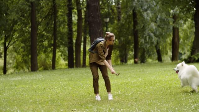 vídeos de stock e filmes b-roll de woman playing with dog outdoors - samoiedo