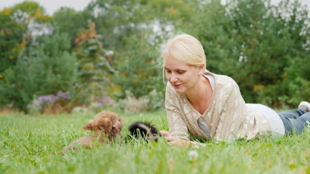 Woman playing with funny puppies in her yard, lying on the green grass video