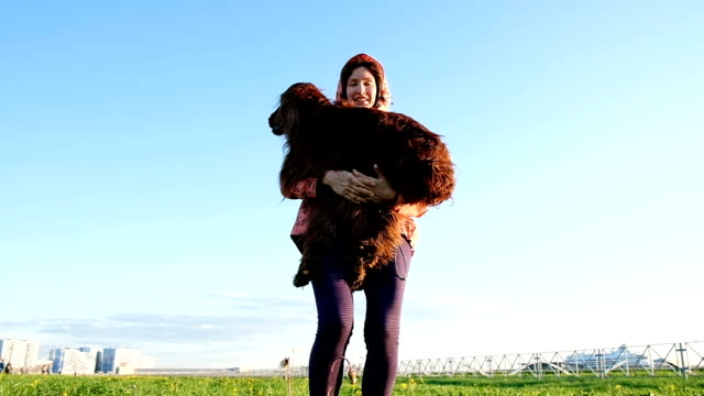 Woman playing with the dog in the park. Young girl throws up a pet on the grass, slow motion Woman playing with the dog in the park. Young girl throws up a pet on the grass, slow motion. irish setter stock videos & royalty-free footage