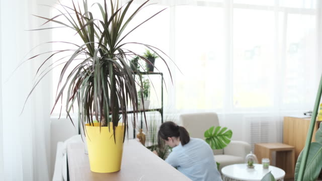 Woman pouring water in houseplants