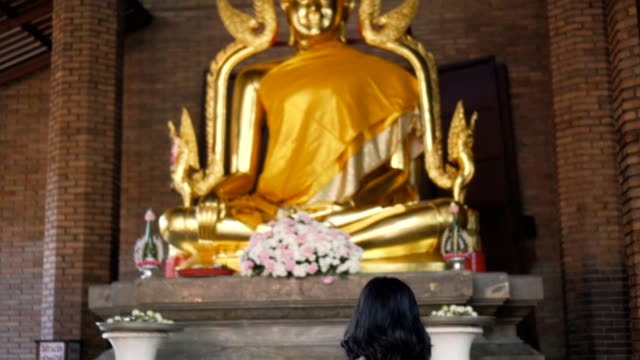 woman praying in the ancient temple - buddha video stock e b–roll