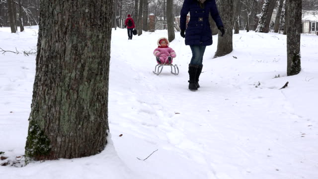 woman pull baby child on sledge through snow in park tree alley. FullHD video